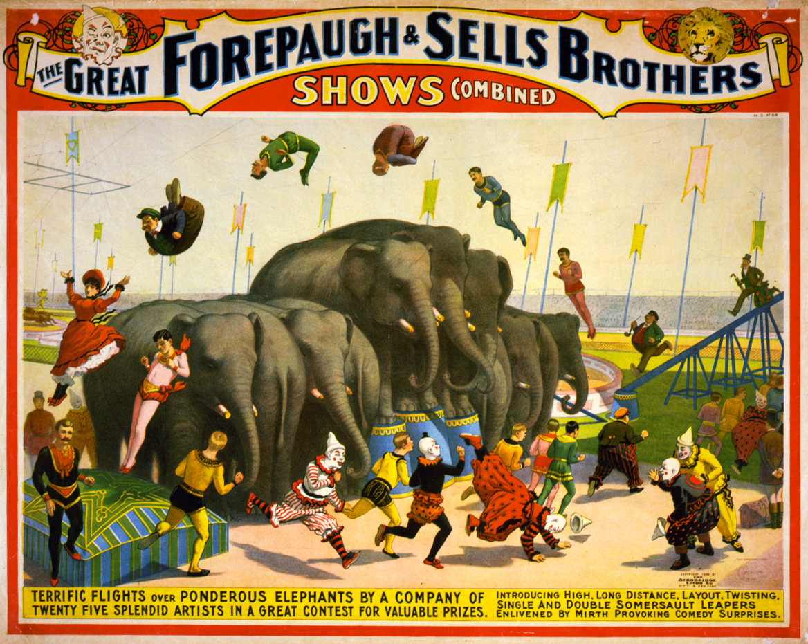Zoo poster design - Carnival Poster Design