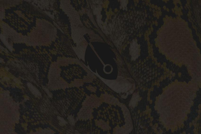 digital-snake-oil